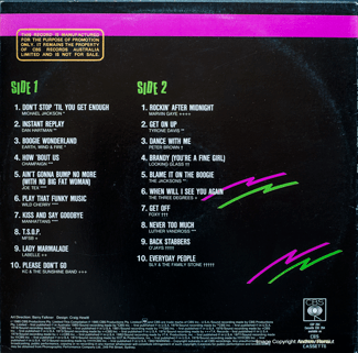 Blame It on the Boogie - back cover
