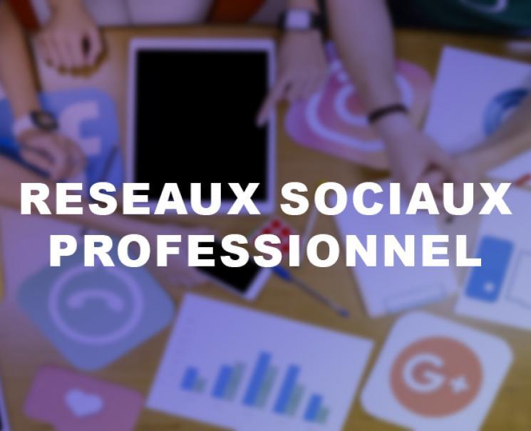 formation-utilisation-professionnelle-reseaux-sociaux