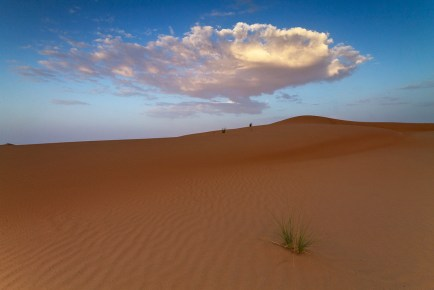 middle-of-the-desert