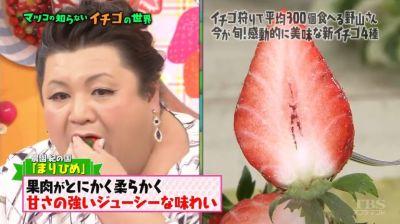 matuko-ichigo9