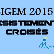 SIGEM 2015 : désistements croisés