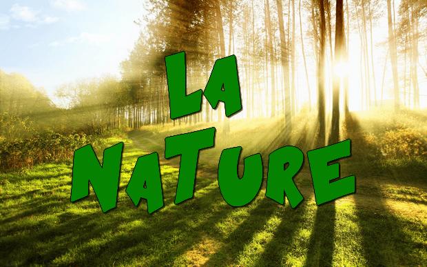 Qui a écrit : « Nous rendre comme maîtres et possesseurs de la nature » ?