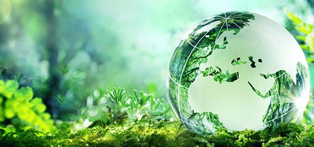 Des acquis aux originaux, 10 points pour travailler son cours sur le développement durable