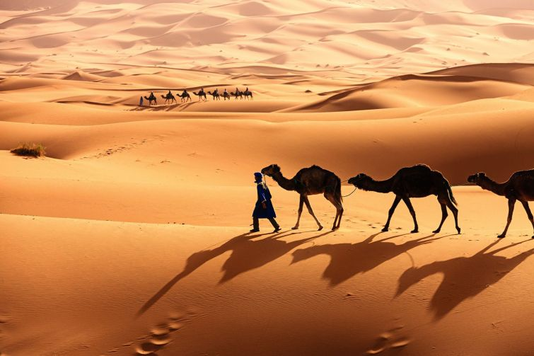 Comment s'appelle la région disputée par le Front Polisario et le Maroc ?