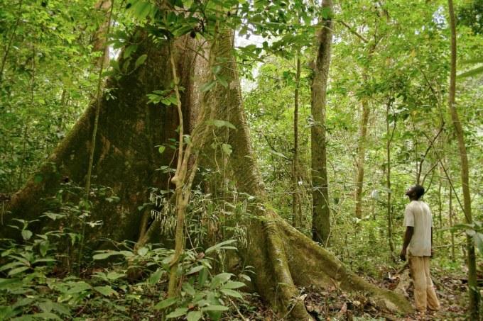 Quel grand groupe français est accusé de pollution sur son sol par le Gabon ?