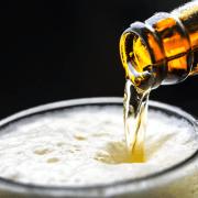 Géopolitique de la bière, l'or doré des écoles