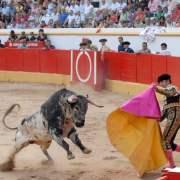 Wolff et l'animal – «Vive la corrida !»