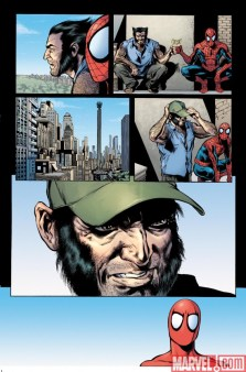 asm_595_preview1
