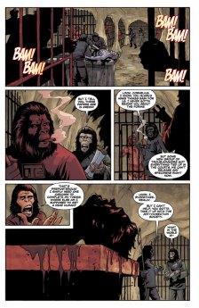 APECAT_01_preview_Page_12