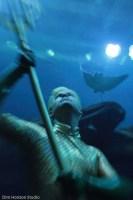 Hansard Aquaman 2
