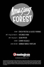 Amazing_Forest_03-2