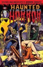 HauntedHorror_#11-copy