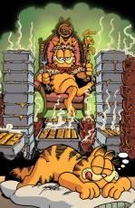 Garfield_25_coverB