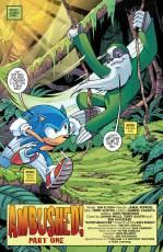 Sonic_266-3