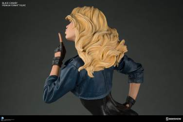 dc-comics-black-canary-premium-format-figure-300287-12