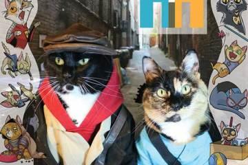 aa_010_cat-cosplay-variant