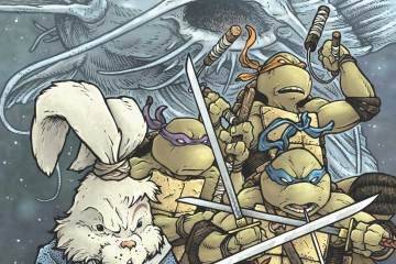 Teenage Mutant Ninja Turtles Usagi Yojimbo