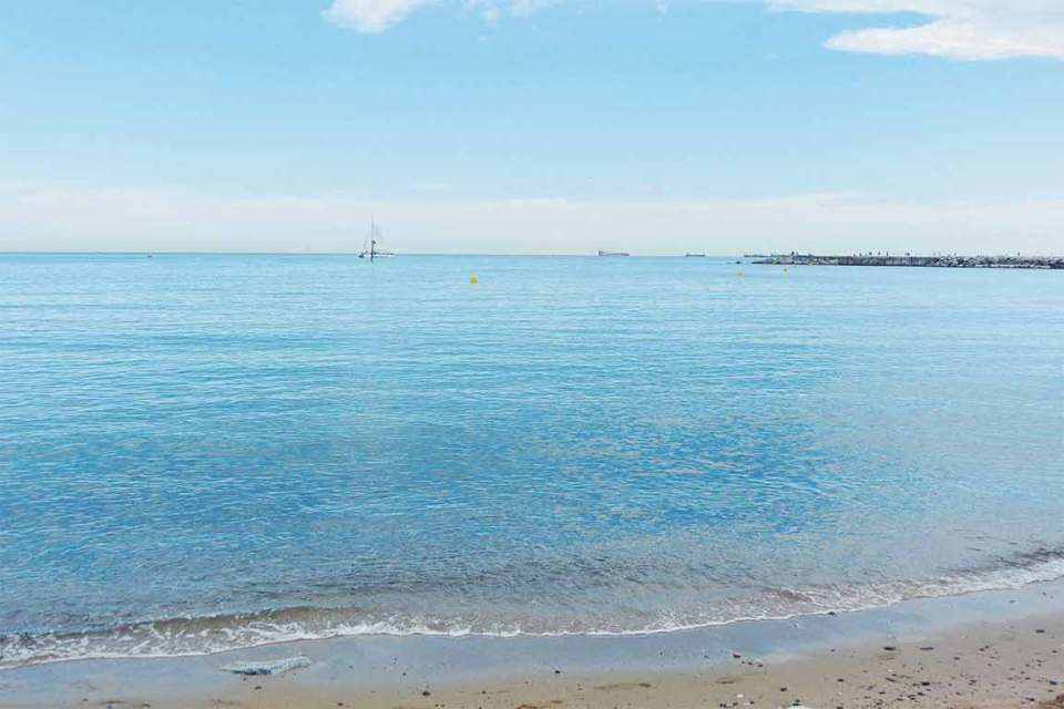 Best Things to do in Barcelona Beach