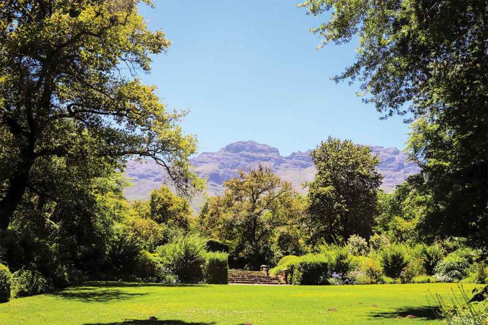 Cape Town Wineries Rustenberg Estate Views