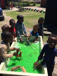 Teaching the plastic animals to swim