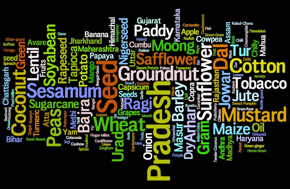 Wordcloud credit: www.wordle.net