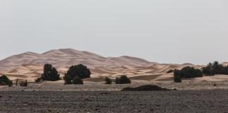 Von der einen Wüste in die nächste   Erg Chegaga