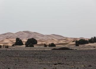 Von der einen Wüste in die nächste | Erg Chegaga