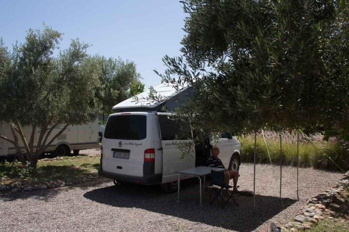 In einem herrlichen Olivengarten stehen wir ganz gemütlich