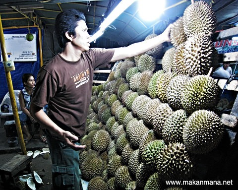 Durian Medan Juntak Margana 3