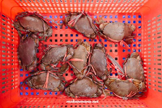 kepiting seafood
