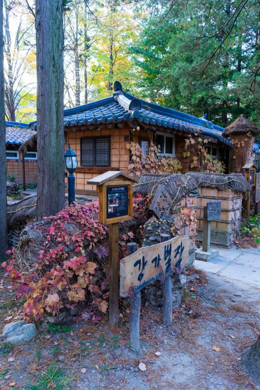 Makan Kepiting Mentah!?  Ini dia lanjutan Trip Kulineran di Korea Selatan Trip (Part II)