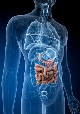leaky-gut-symptoms
