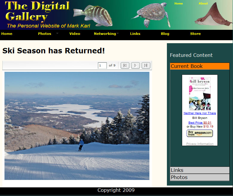 The Digital Gallery Website