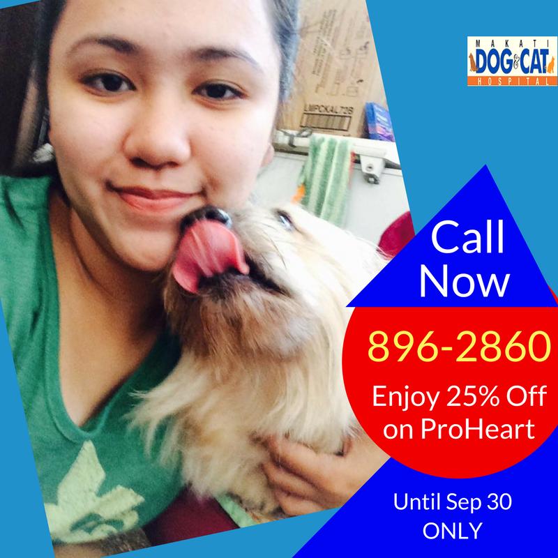 proheart heartworm prevention 4