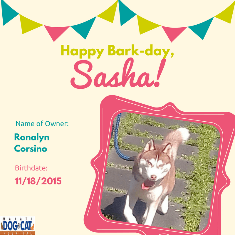 Happy Birthday, Sasha!