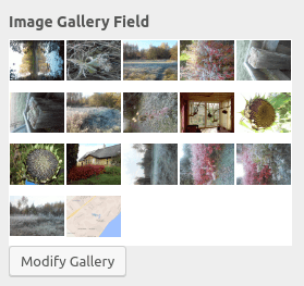 Image Gallery field in the customizer