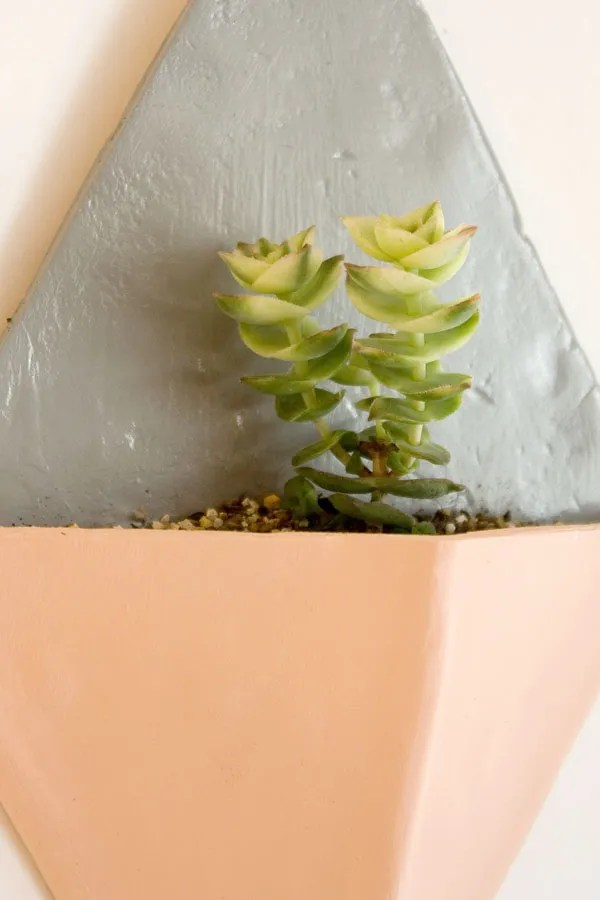 Air Dry Clay Wall Planter DIY