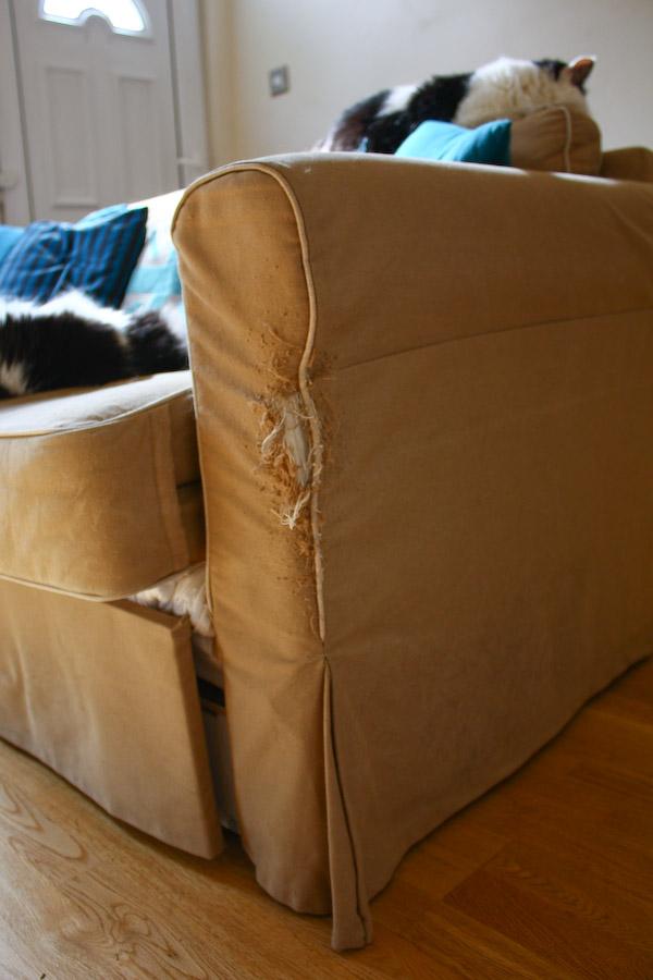 Cat Scratched Sofa