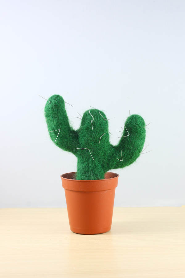Needle Felt Cactus DIY. How to create a needle felted cactus.