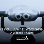 Come scoprire quale tema WordPress utilizzato da un sito