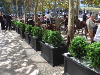 makebeleaves uv boxwood artifical plantings