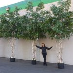 "The trees we created for the Holiday Inn, Columbia dwarf my 5'4"" frame."