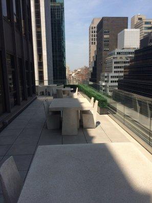 Manhattan-rooftop-UVBoxwood