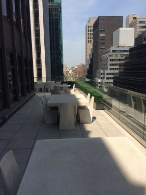 Manhattan-rooftop-UVBoxwood