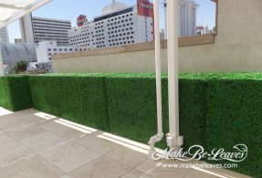 UV_Boxwood_Hedges2