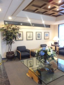 interior artificial plants and trees