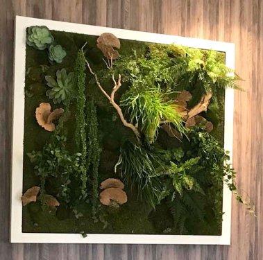 makebe-leaves-Konica-green-wall-plantings