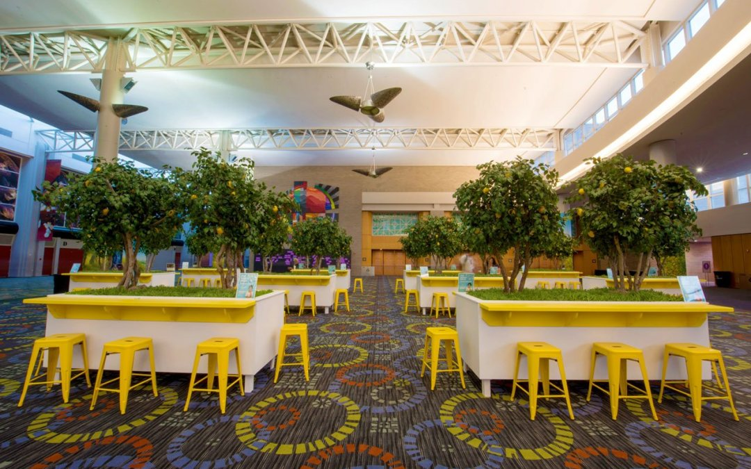 CUSTOM ARTIFICIAL TREES: FAUX LEMON TREE GROVE FOR EVENT