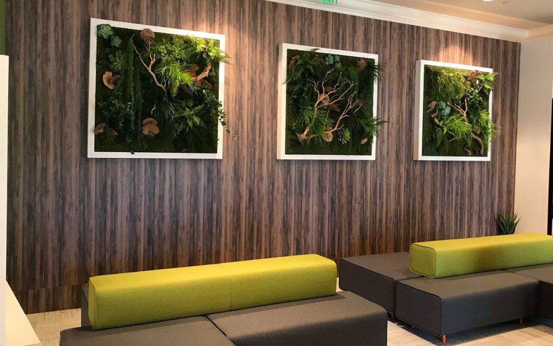 green wall plantings framed