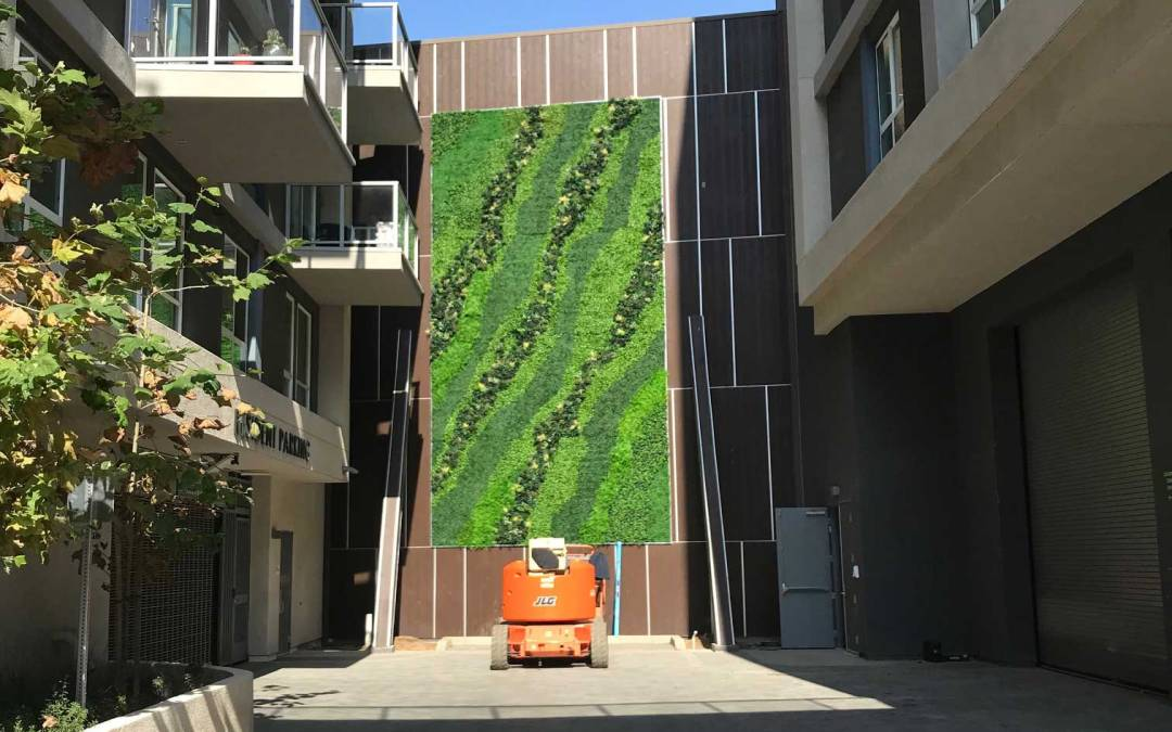 Artificial Green Walls for The Village at Howard Hughes Ctr.